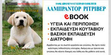 labrador ebook
